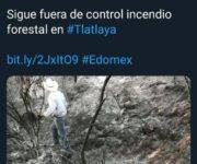 Circulan fotos de fauna muerta en Edo Mex y las atribuyen al incendio del Cerro de la Venta en San Juan del Río