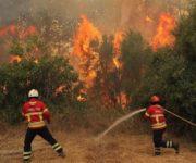 Urge Gobierno de Landa de Matamoros voluntariado en zona de incendio, fuego se extiende