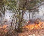 Problemas en la Delegación Querétaro de la CONAFOR para abatir incendio en Jalpan de Serra
