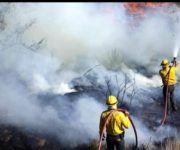 Pudieron haber sido dos personas quienes iniciaran incendio en Jalpan