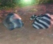 """""""Encobijados"""" hallados en Presa de Huichapan, son de Tequisquiapan y Peñamiller"""