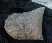 Policías de El Marqués aseguran 1 kilo de marihuana