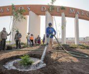 Continúa programa de reforestación en El Marqués