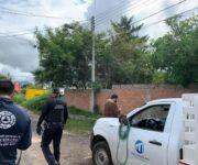 Alerta San Juan: Sigue sin aparecer el puma