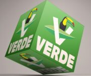 Partido Verde y sus candidatas y candidatos a los 18 ayuntamientos –EXCLUSIVA-